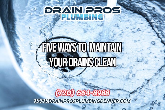 Tips to Maintain a Healthy Drainage System in Denver Colorado