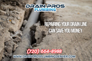 Repair Your Drain Line Can Save the Environment in Denver Colorado