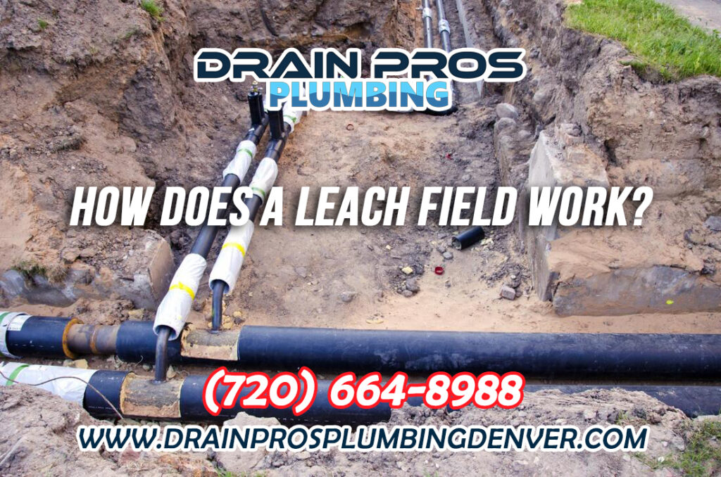 How does a Leach Field Work in Denver Colorado