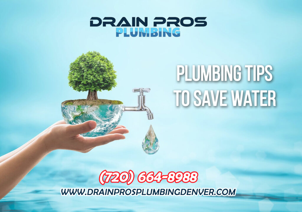 How to Save Water in Denver Colorado