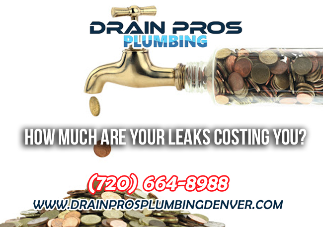 Cost of Water Leaks in Denver