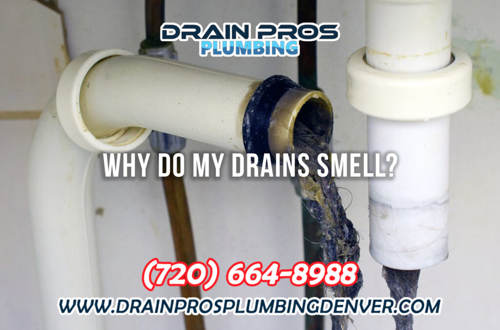 Why Do My Drains Smell Bad in Denver